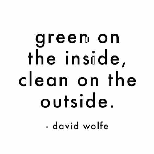 Green on the Inside, Clean on the Outside