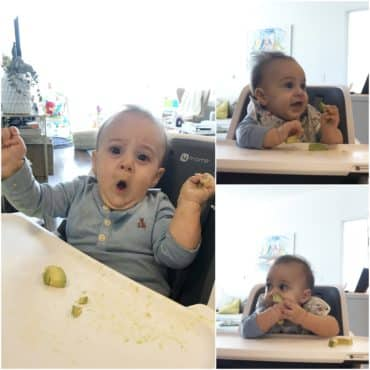 Our first week with baby led weaning