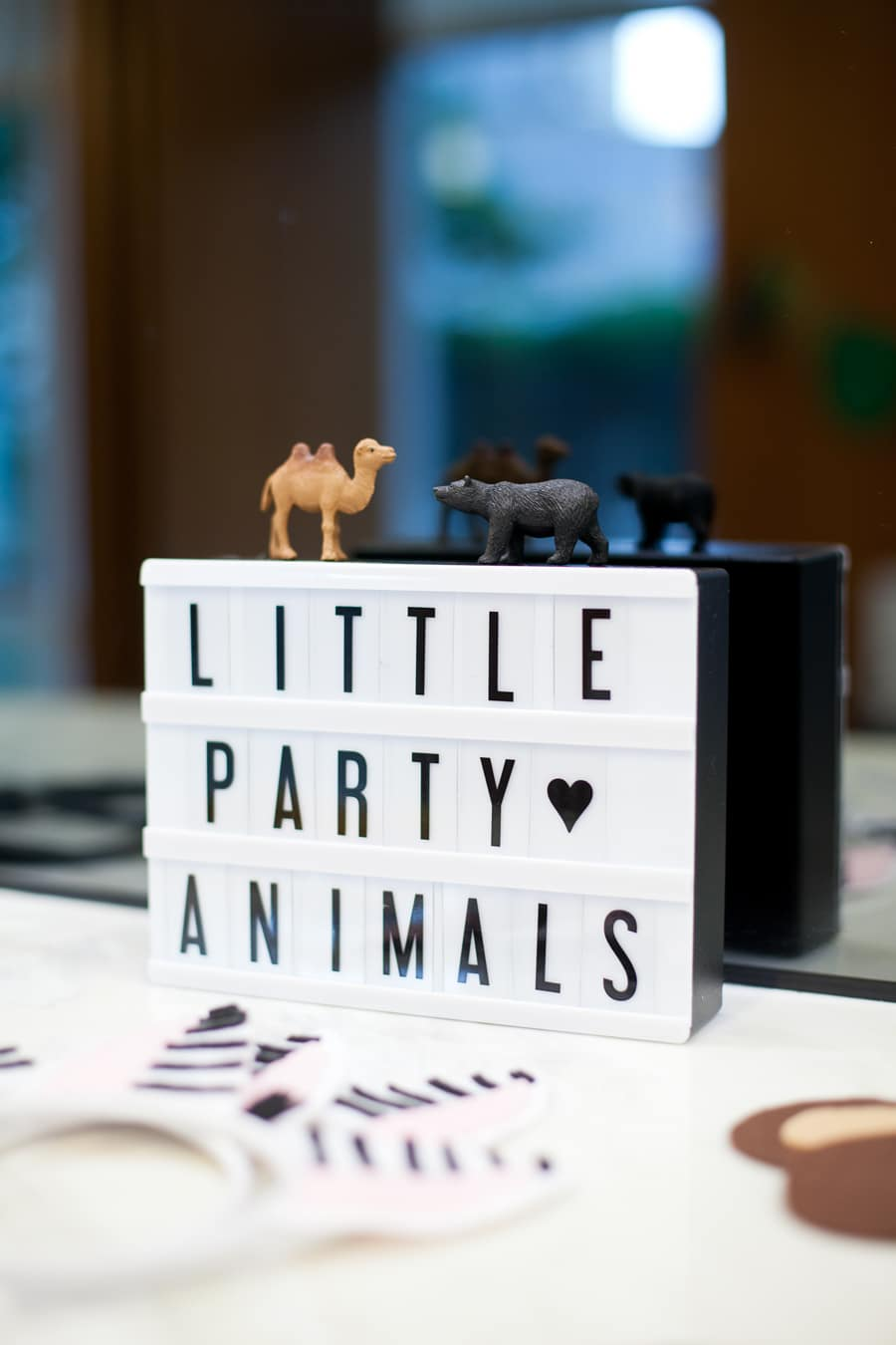 Luca's wild animal one year birthday party