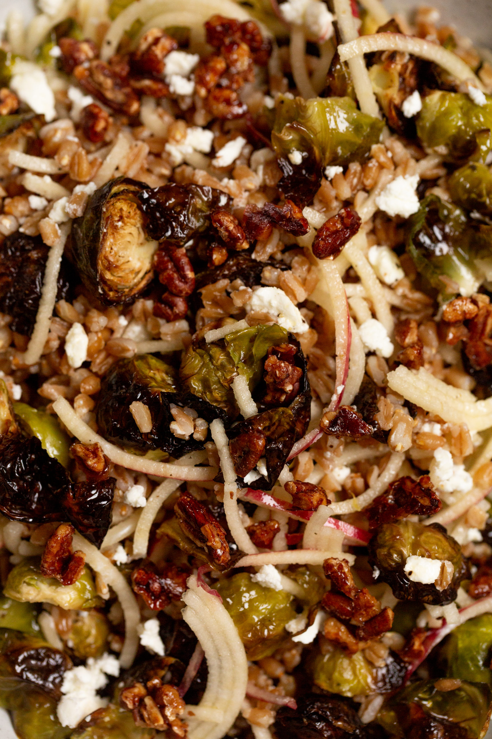 Apple and Farro Salad with Roasted Brussels Sprouts