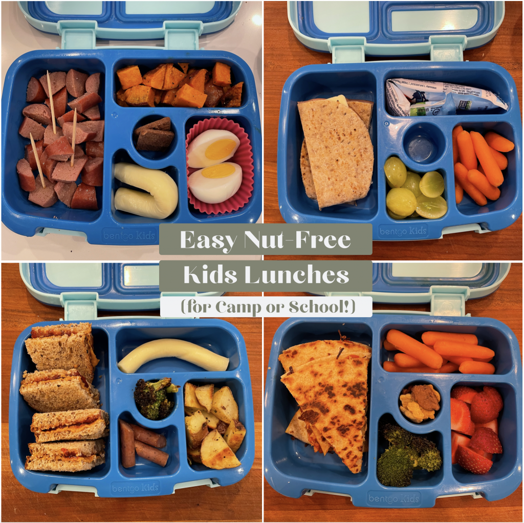 Easy Nut-Free Kids Lunch Ideas for Camp or School